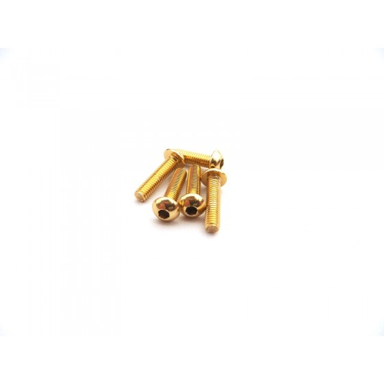 Hiro Seiko 7PX Light Weight Screw Set [Gold]