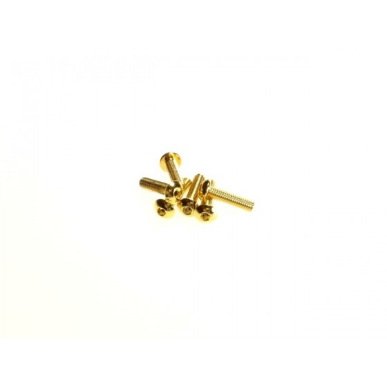 Hiro Seiko Hex Socket Button Head Screw M3x12  [24K_Gold] ( 6 pcs)